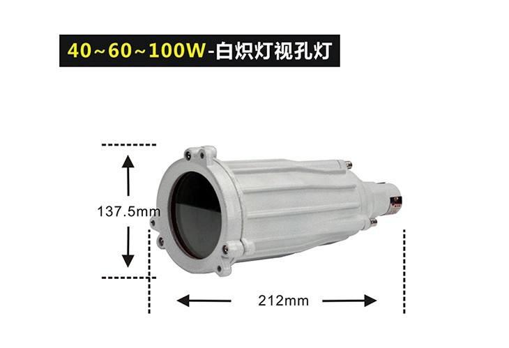 BSD96防爆视孔灯空壳