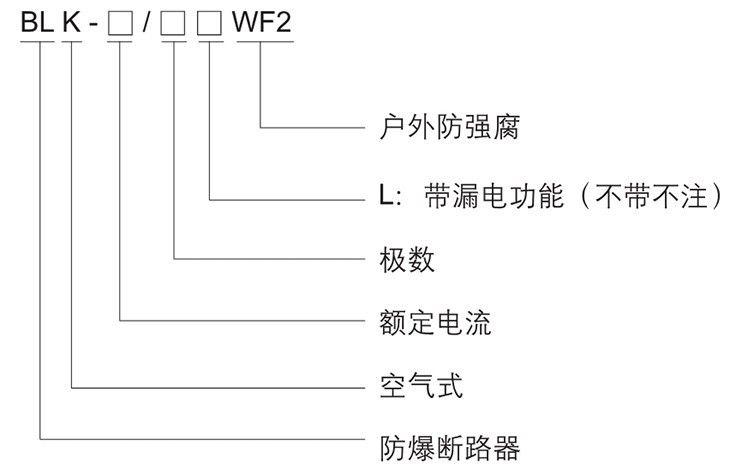 BLK系列防爆防腐断路器型号含义