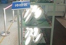 深圳LED防爆灯厂家