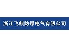 浙江飞麒防爆电气有限公司
