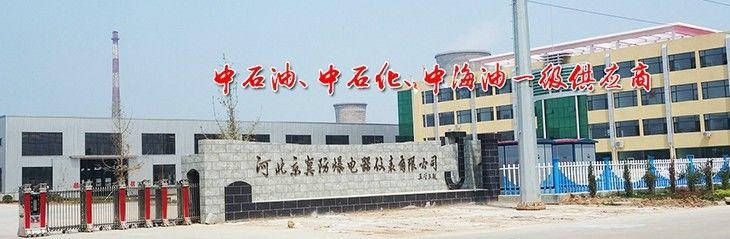 河北京冀防爆电器仪表有限公司