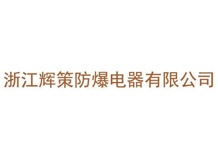 浙江辉策防爆电器有限公司